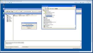Datenübertragung aus Protool in der VMWare